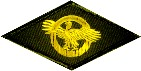 Honorable discharge - Ruptured Duck patch