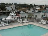 photograph of Shem Creek Harbor and Pool